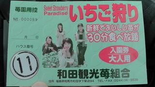 和田観光苺組合 - 今回は、ハウスNo11でした