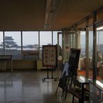 35207209 - 和歌山城と同じ高さです