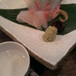 魚屋海老蔵 - 春先取り!旬のカサゴのお刺身食べました!くせのないお魚。生物が苦手な人でも食べれる感じです!(^-^)vこんな旬のものが美味しく頂けるので毎回、行くのが楽しみです!
