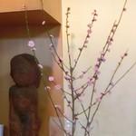 おでん割烹語りばさ - 啓翁桜、、、早咲きの桜です。