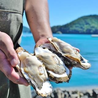 1年中新鮮な生牡蠣がたべられます♪