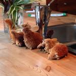 森のカフェ - カウンターの森の小動物たち。