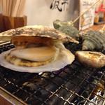 波平 - ホタテ残酷!