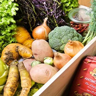 地産のお野菜をご用意しております。