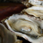やま栄水産 - 料理写真:生牡蠣1コ100円