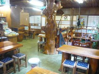 根っ子食堂 - 樹齢200年以上のけやき大木