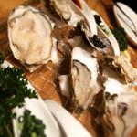 OYSTERS,INC. - 産地の違う牡蠣3種