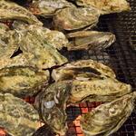 かき小屋 匠ちゃん - 焼き牡蠣食べっ放題