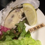 35699033 - 生牡蠣