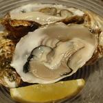 """MA MAISON - 今日3/7のお勧めメニュー""""生牡蠣""""1ケ500円です。"""