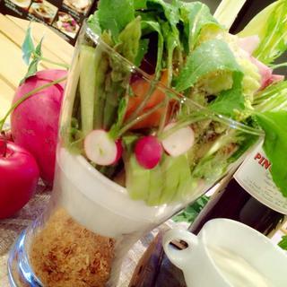 武蔵野の朝採れ新鮮野菜を毎日直送!!