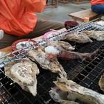35821080 - 牡蠣に包囲されたタコ