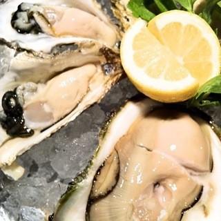 毎日新鮮な牡蠣が食べられる!