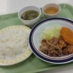 農学部食堂 - 「ミックスプレート (360円)」、ご飯とお味噌汁を付けてワンコイン