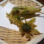 豆腐料理 空野 - フキノトウ、タラの芽