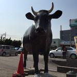 神戸屋 - 逆光ですが。牛の置物がかわいい。