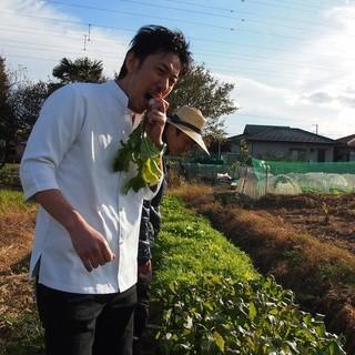 鮮度抜群!彩り農園から直送の野菜たち!