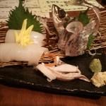 ひぼし屋 - お刺身 イカとアジ