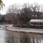 櫟庵 - 対岸から見る店