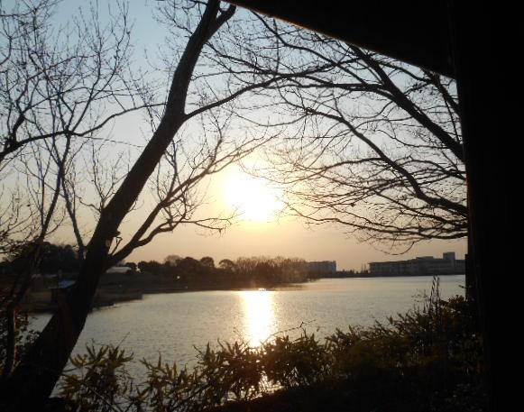 つろぎ - 窓側席から見る十二谷池
