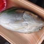 みすみフィッシャーマンズワーフ ラ・ガール - 料理写真:コノシロ寿司