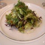 プルミエアベニュー - マグロのお刺身サラダ