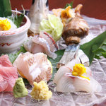瑠璃座 - 近海物中心のお刺身盛り