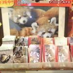 マルヤマズー オフィシャルショップ - 1000円以上購入で、アニマルカード1枚サービス 【 2015年3月 】