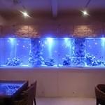 ステラビーチカフェ - 夜になると、ライトアップでムーディーな雰囲気に!