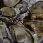 中山牡蠣養殖所 - 生かき