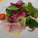 トルッキオ - 黒ダイのカルパッチョとイカと菜の花のサラダ【2015年3月】