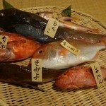 まるへい - 本日の地魚②