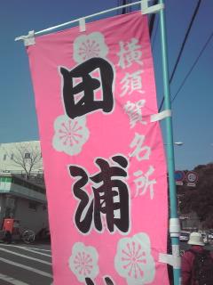 ふじみや菓子店 田浦店