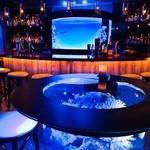 bar shark -