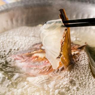 魚介の粋を集める。渋谷で滅多にお目にかかれない新鮮な海鮮。