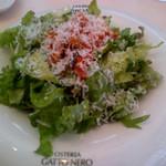 ガット・ネーロ - 野菜サラダ