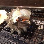 浜焼酒場 トロハチ - サザエ