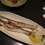 天の魚 -