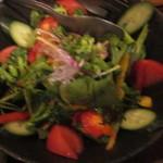 肴や だんじ - 糸島野菜のサラダ