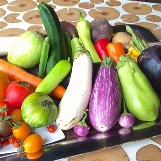 地産地消、季節毎で旬の新鮮な食材を提供