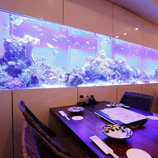 大きな水槽に熱帯魚