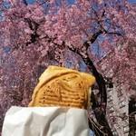 鯛八 - せっかくなので桜の木の下で記念撮影