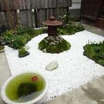 36506659 - 庭園をながめるものいいね♬