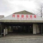 阿蘇観光牧場 -