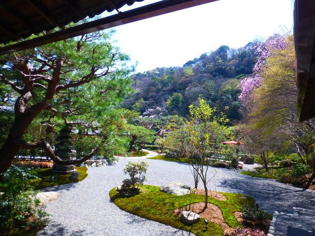 京 翠嵐 - レストランの庭♪
