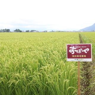 極上の有機栽培米「あきたこまち」
