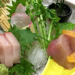 明石の魚処 さかづき - お刺身