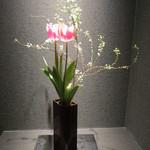 天雅 - チューリップが咲いていました。