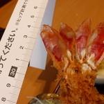 とんかつ かつ丸 - <2015.04.04>ウルトラジャンボ海老&ロースかつ定食