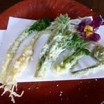 季節料理 つばき - 山菜の天ぷら(左から、行者ニンニク、ノビル、タラの芽、コシアブラ、コゴミ、椿の花)(ランチ雪1500円)(2015年春)